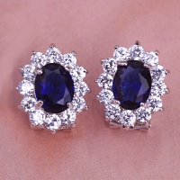 0203300095 Fashion Copper  Rhinestone Earrings 2 Colores