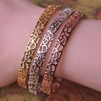 6505100007 Statement Bangle  1set (3pcs,3colores)
